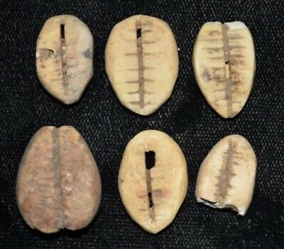 """Set of 6 Ancient Chinese """"Cowrie Shell"""" Money Coins/Beads 1750-1150 BC D9"""