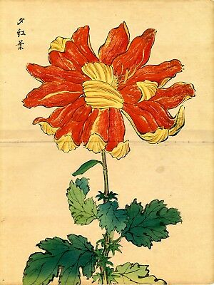 "Double Size 1893 HASEGAWA Japanese woodblock print ""CRIMSON LEAVES OF EVENING"""