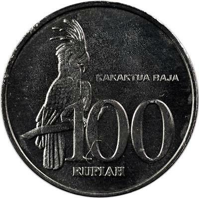 Indonesia - 100 Rupiah - 2000 - Unc - Palm Cockatoo Bird