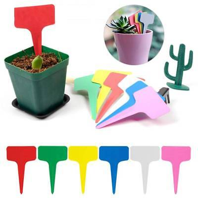 Plastic Plant Seed Label Pot Marker Stake Nursery Garden Hang Tag Plant Label