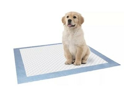 20 Puppy Pads For Toilet Training - Pee Wee Mats Dog Cat - Large & Absorbent