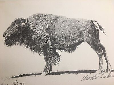 Charles Beckendorf. BISON Limited Signed 11x14 Print