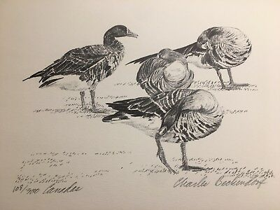 Charles Beckendorf. CANADAS Limited Signed 11x14 Print