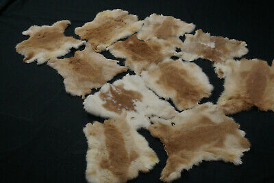 Rabbit Skins - Assorted natural colour rabbit pelts