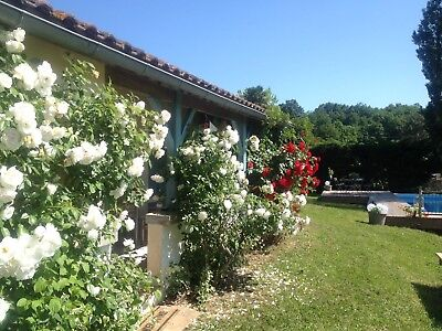 Cottage/Gite South West France - free wifi, private pool,gardens  Sept avail
