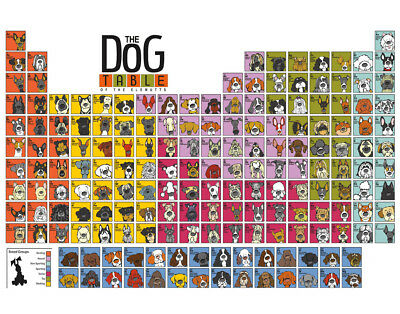 "Cute Dog Breeds Fabric poster 20x13 / 36x24"" Decor 23"