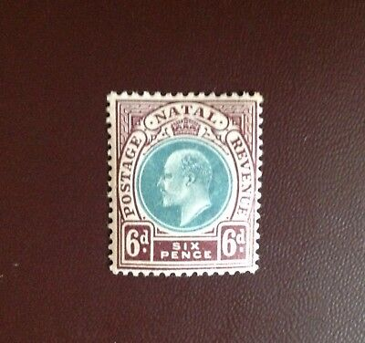 South Africa Natal 1902-03 6d Green & Brown Purple SG135 MH