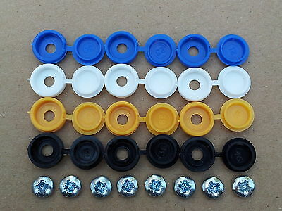 Number Plate fixing screw / screws caps / covers 20 pcs euro blue *FREE Postage*