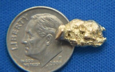 Gold Nugget 2.6 Grams #131