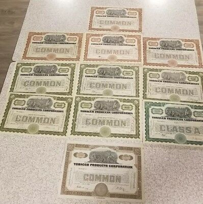 Vintage Ephemera Stock Certificate Tobacco Products Corporation Lot of 11