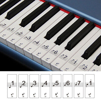 1xMusic Keyboard Or Piano Stickers 88 KEY SET LAMINATED Clear Stickers