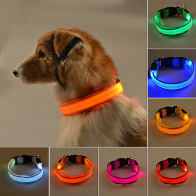 LED Dog Collar Night Luminous Harness Party XS-XL Adjustable Button Batteries