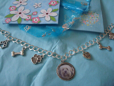 """LHASA APSO""  Charm Bracelet  NEW with gift bag"