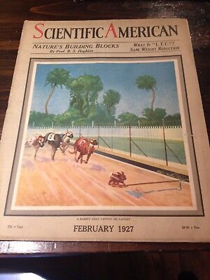 Vintage Magazine with a Greyhound Scene with Article - 1927