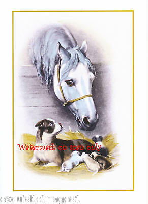 Vintage Horse with Boston Terrier Dog and Pups NEW Large Note Cards