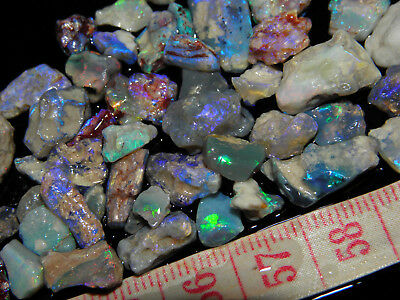 Natural Rough Australian Lightning Ridge Small Opal Specimens/Fossils 75,05 Cts