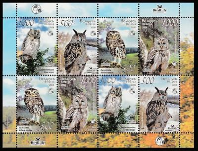 BELARUS 2008 FAUNA BIRDS OWLS Mi.750-53 MNH SHEET