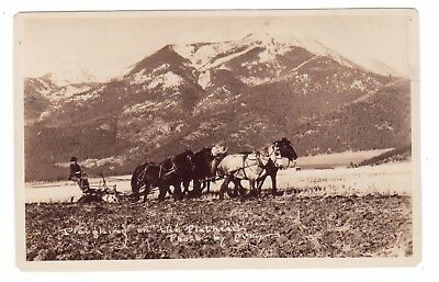 McCay RPPC  c 1912 View of Four Horse Team Plowing on the Montana Flat Head