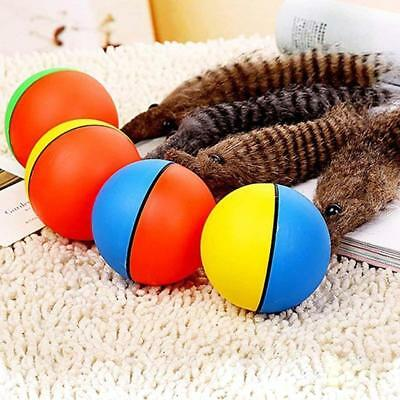 Dog Cat Weasel Motorized Funny Rolling Ball Pet Appears Jump Moving Alive Toy BT