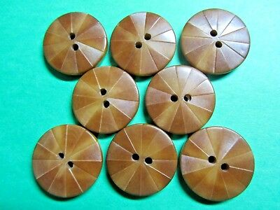 """(8) 7/8"""" Vintage Decorative Brown Vegetable Ivory 2-Hole Buttons (X11)"""