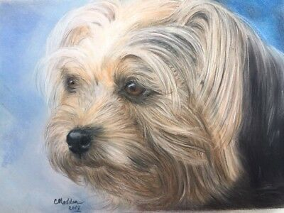 "Original pastel painting of adorable Terrier. 9x12"" image on Pastel paper"