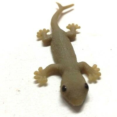 Gecko Cat Toy Prop Rare Realistic Fake Lizard Two Tail Joke Rubber High Quality