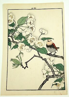 Original Imao Keinen (1845 - 1924) Japanese Woodblock Print Spring Group Oban