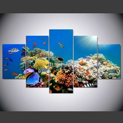 Beautiful Coral Reef Fishes sea 5 Piece Canvas Wall Art Print Poster Home Decor