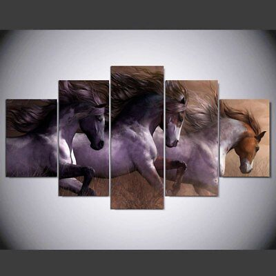 Horses animal painting  5 Piece Canvas Wall Art Print Home Decor