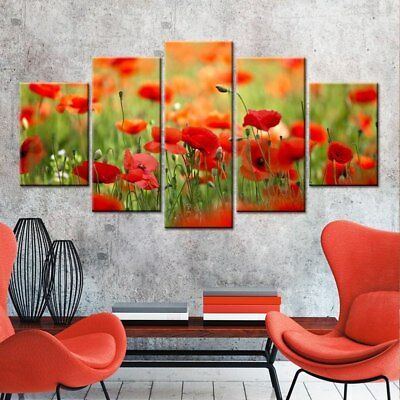 Red Poppy Huge Abstract Flower 5 Pcs Canvas Wall Art Print Picture Home Decor