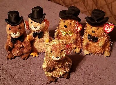 Ty Beanie Babies Lot Of 5 PUNXSUTAWNEY PHIL S...2 Ty Store Exclusives. a7efd09ea6fe