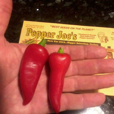 Jalapeno Pepper - Early Seeds