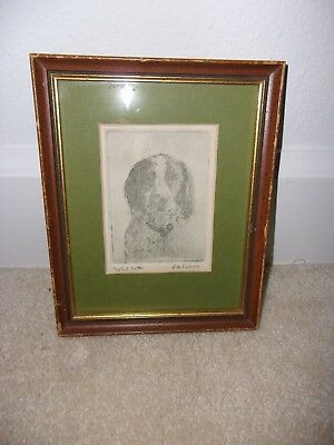 1940s Original Rita Swann Etching English Setter
