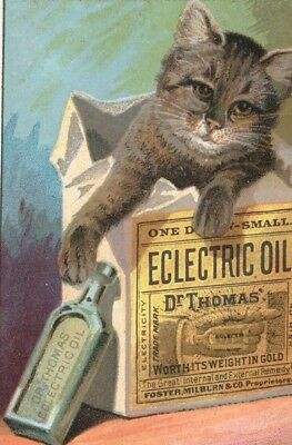 Original 1880s Dr Thomas Eclectric Oil TRADE CARD -  Spencer MA - Cat & Bottle