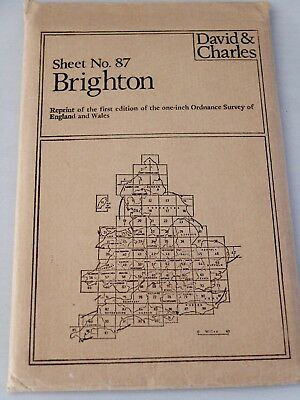 1882 Vintage Reprint Brighton Map - Excellent Condition