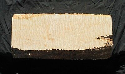 """Awesome 5A Quilted Maple 23 1/2"""" X 10 5/8"""" X 1 15/16"""": Guitar, Luthier, Craft"""