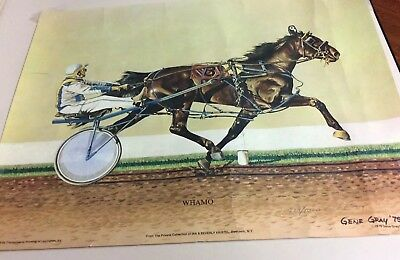 """Vintage 1979 Signed & Numbered Gene Gray Print - """"Whamo"""" Harness Racing Horse"""