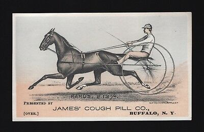 1880s Race Horse Trotter Adv Trade Card - RARUS - James Cough Pill