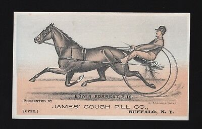 1880s Race Horse Trotter Adv Trade Card - J Edwin Forrest - James Cough Pill