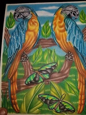 Hand Drawn Parrot Picture