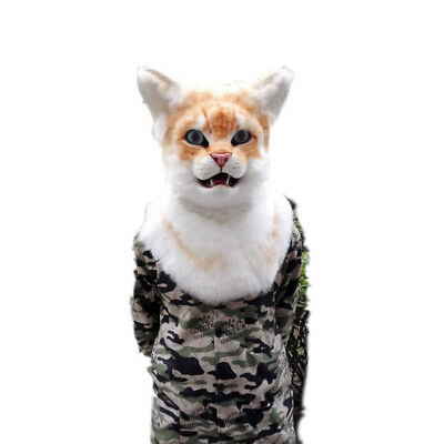 Image result for cat furry