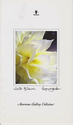 American Airlines (Usa) - Menu Business Class - 11/2008 - White Flower