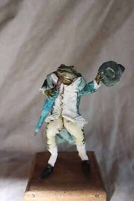 taxidermie grenouille dandy taxidermy frog curiosité oditties