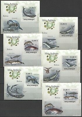 E121 !!! Imperforate 2010 Mozambique Marine Life Whales Baleias 6 Lux Bl Mnh