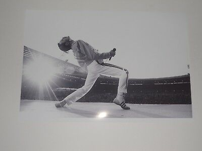 """Large Freddie Mercury Queen on Stage '86 Wembley """"Rock God"""" Poster 19""""x13"""""""