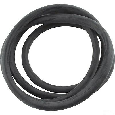 Jandy DEL DEV CL CV Filter Tank Lid O-Ring Replacement for R0357800