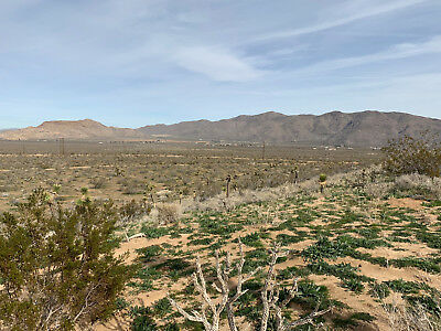 3.84 Nice View Acres in S.E. Apple Valley, CA! Close to Town, Power Close!