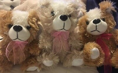 Shaggy TEDDY BEARS 3 PLUSH SHAGGY Stuffed Animal Toys TEDDY BEAR