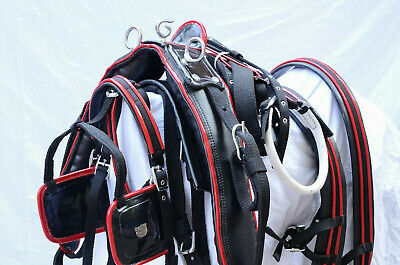 Webbing Horse Harness Two Tone For Single Horse With Black Combination