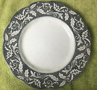 English Staffordshire Sterling RENAISSANCE J&G Meakin Dinner Plates Lot Of 2